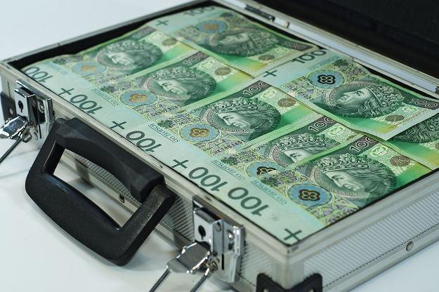 Pieniądze 2,6 mln osób zostały objęte ochroną Bankowego Funduszu Gwarancyjnego /©123RF/PICSEL