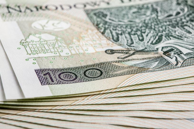 Pieniądze; zdj. ilustracyjne /123rf /123RF/PICSEL