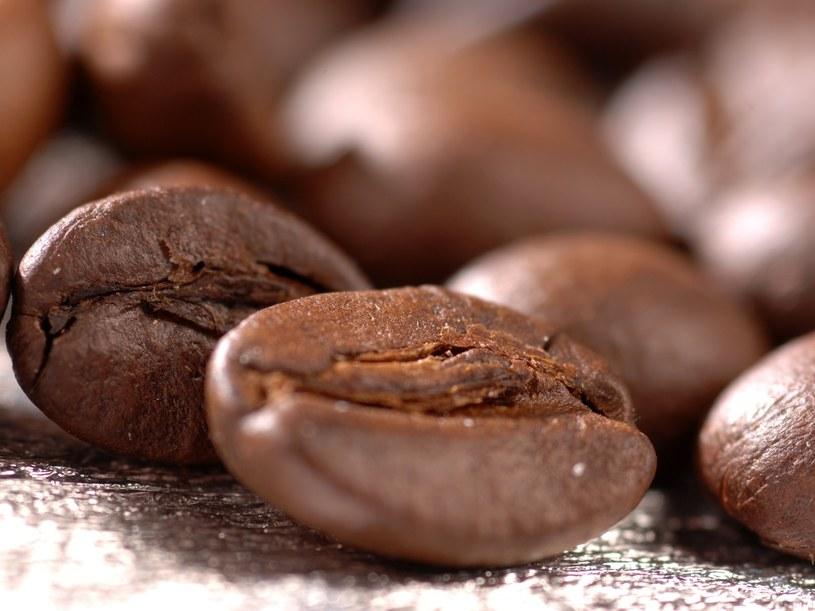 Pierwsza kawa miała smak zbliżony do przyrządzanej po... polsku. &nbsp /Styl.pl