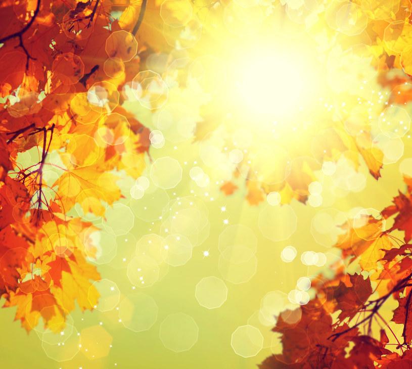 Pierwsza połowa listopada będzie słoneczna /123RF/PICSEL