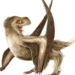 Pierwsze dinozaury były opierzone?
