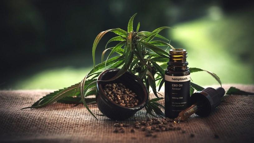 Pierwsze kliniczne testy udowadniają, że uzależnienie od marihuany można leczyć marihuaną /Geekweek