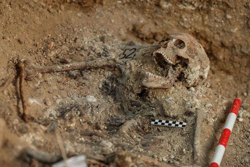 Pierwsze sondaże archeologiczne przeprowadzono w Bielsku Podlaskim we wrześniu 2016 r (zdjęcie ilustracyjne) /AFP