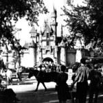Pierwsze zdjęcia Disneylandu. Zobacz, jak wyglądał!