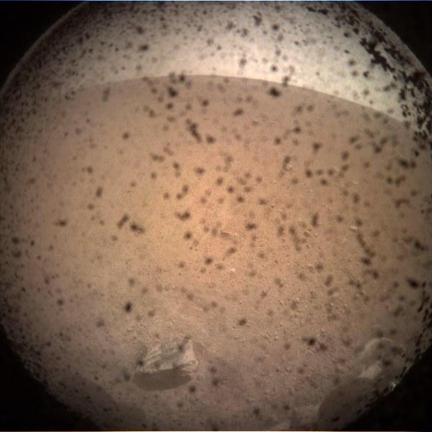 Pierwsze zdjęcie z sondy InSight /NASA
