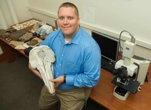 Pierwszy autor pracy, Will Gearty, z czaszką delfina /Steve Castillo /Materiały prasowe