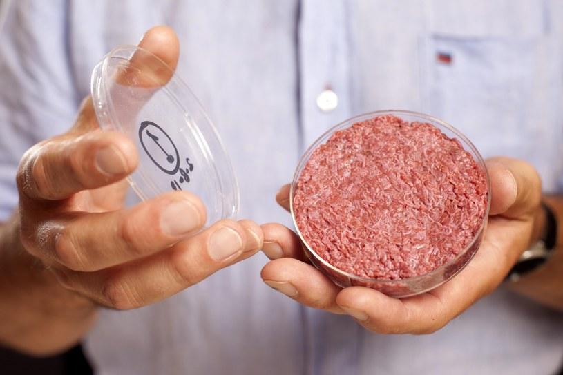 Pierwszy w historii burger z probówki. /PAP/EPA