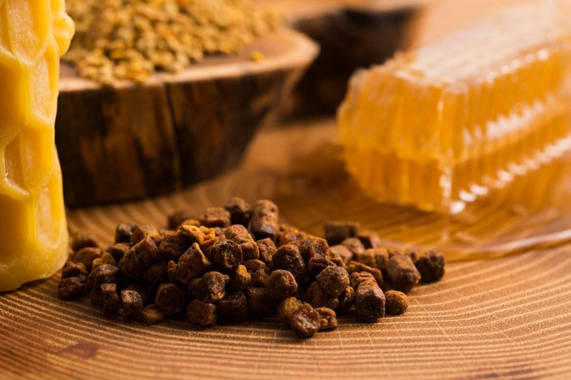 Pierzga pszczela jest podstawą diety pszczół /123RF/PICSEL