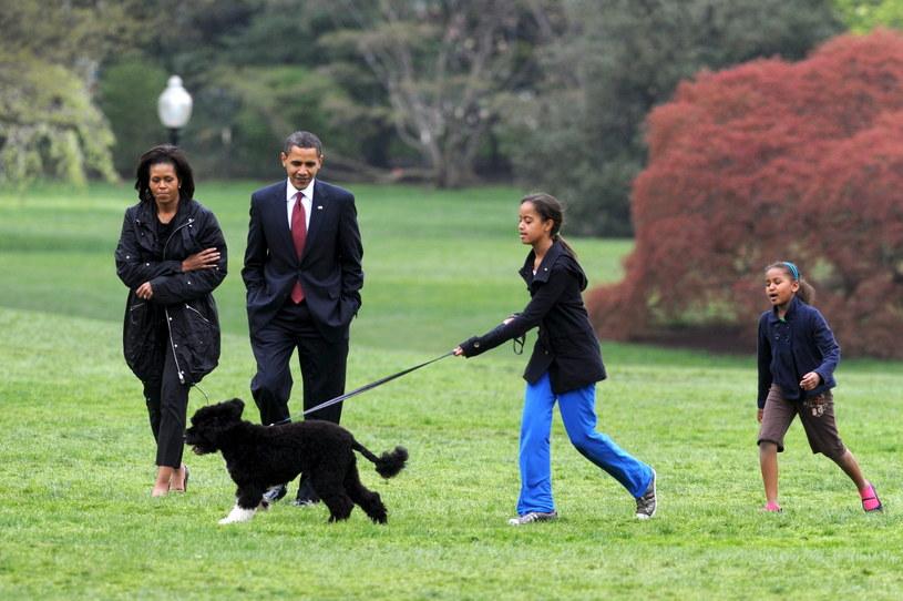 Pies Bo z rodziną Obamów /MICHAEL REYNOLDS    /PAP/EPA