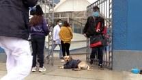 Pies dzielnie czeka na swojego pana pod szpitalem