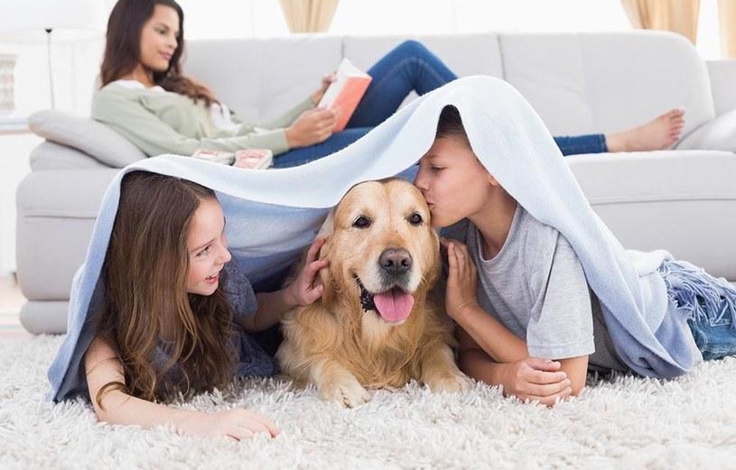pies i dzieci /© Photogenica