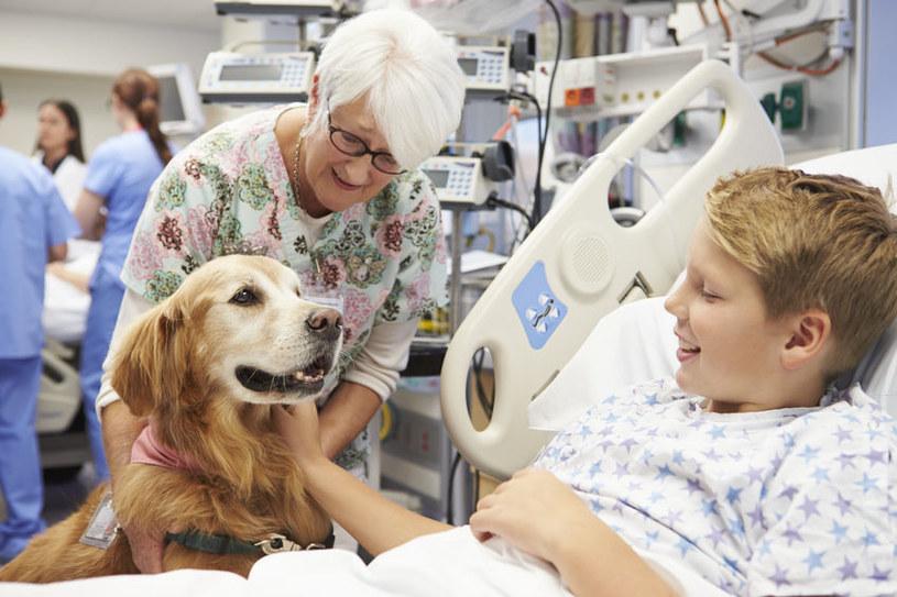 Pies może wspomóc leczenie najcięższych chorób /©123RF/PICSEL
