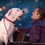 Pies śpiewający piosenkę Whitney Houston! - wideo