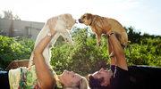 Pies sprawia,  że jesteśmy zdrowsi