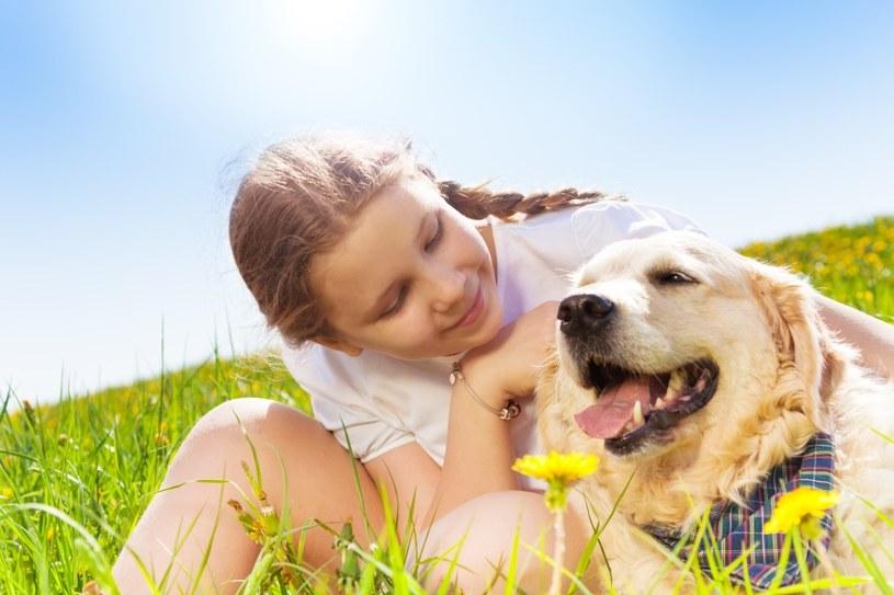 Pies to doskonały kompan /©123RF/PICSEL
