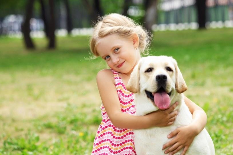Pies to najlepszy przyjaciel /©123RF/PICSEL