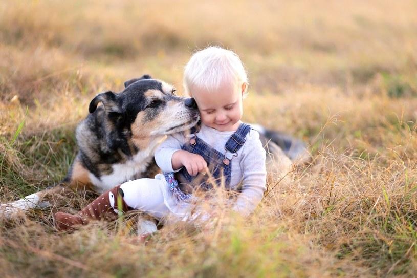 Pies troszczy się o dziecko /©123RF/PICSEL