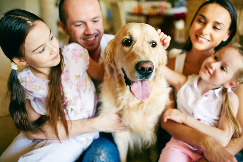 Pies w rodzinie /©123RF/PICSEL
