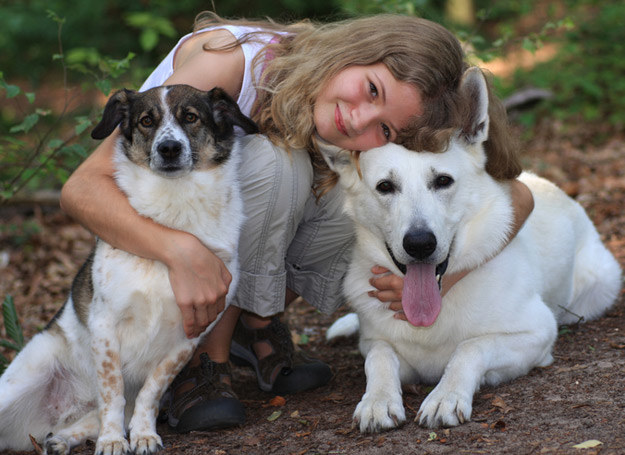Pies ze schroniska szczególnie potrzebuje uwagi /© Panthermedia
