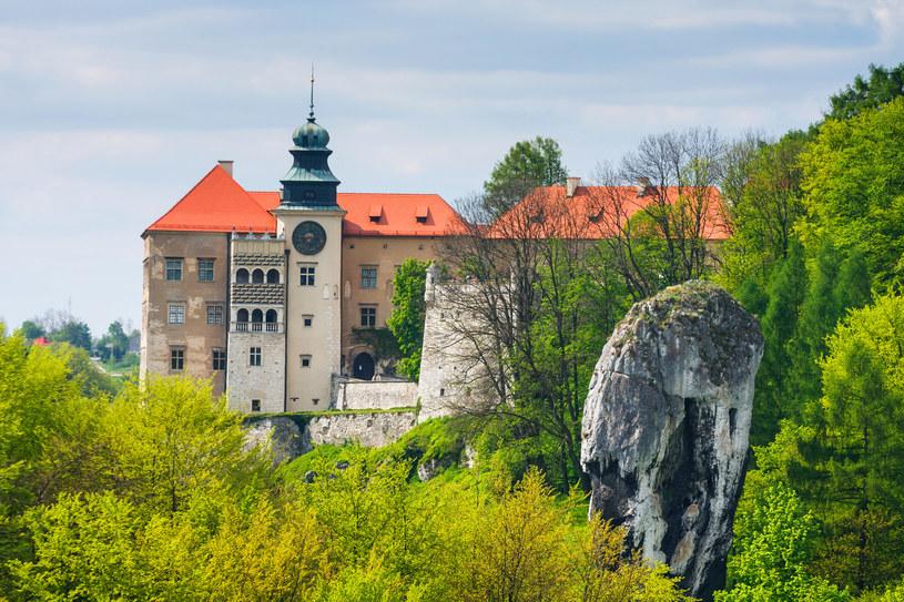 Pieskowa Skała to jedno z miejsc wartych odwiedzin podczas pobytu na Wyżynie Krakowsko-Częstochowskiej /123RF/PICSEL