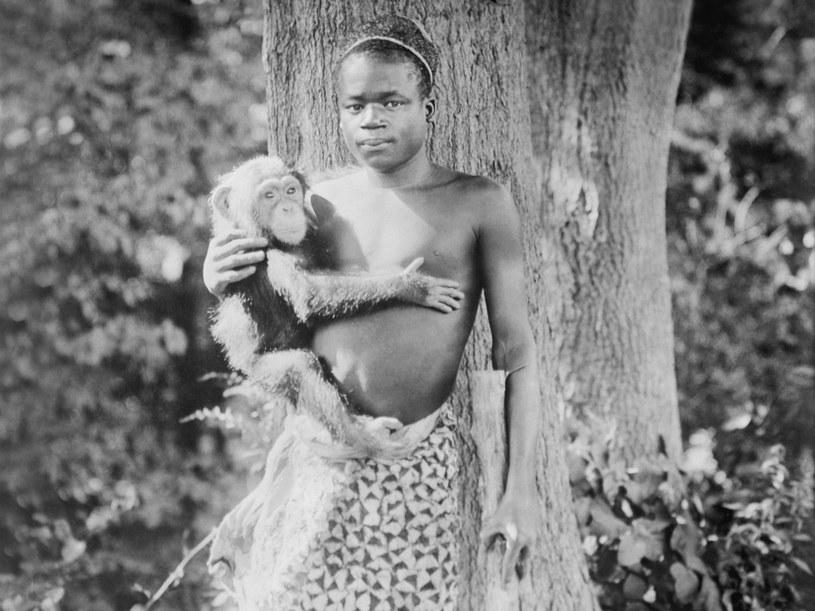 Pigmej Ota Benga został kupiony w Afryce Równikowej iprzewieziony do USA. Po wystawianiu go w zoo jako żywego eksponatu popadł wdepresję ialkoholizm /East News