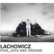 Pigs, Joys And Organs