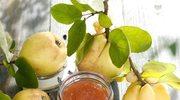 Pigwa - polska cytryna w twojej jesiennej kuchni