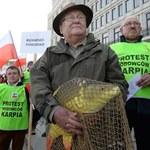 Pikieta hodowców karpi w Warszawie