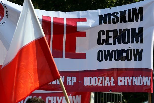 Pikieta sadowników w Warszawie /PAP