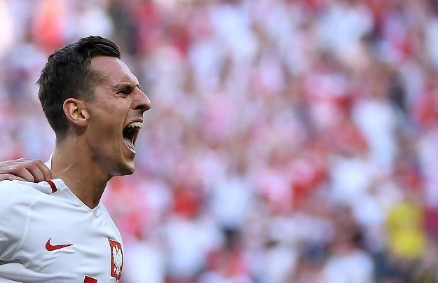 Piłkarz reprezentacji Polski Arkadiusz Milik cieszy się z gola strzelonego Irlandczykom z północy /PAP