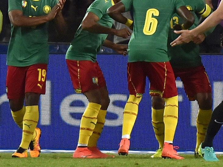 Piłkarze Kamerunu chcieli się trochę odmłodzić /AFP