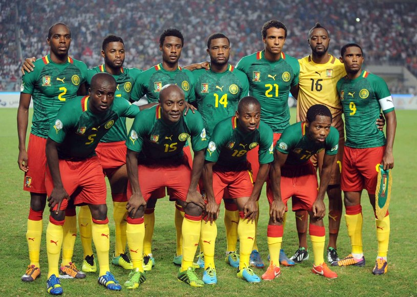 Piłkarze Kamerunu zagrają na mundialu w Brazylii /AFP