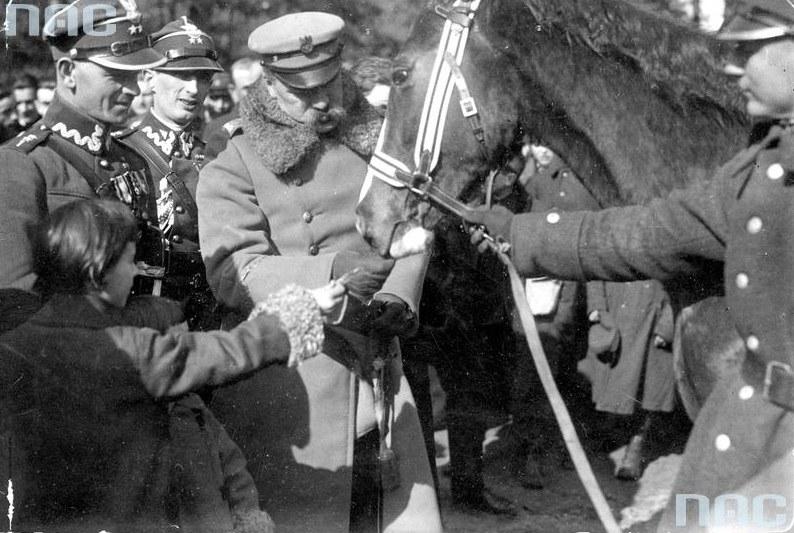 Piłsudski z Kasztanką /Ze zbiorów Narodowego Archiwum Cyfrowego