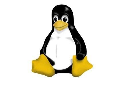 Pingwin Tux - maskotka Linuksa narysowana przez Larry'ego Ewinga /materiały prasowe