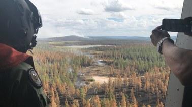 Pionierska metoda walki z ogniem. Szwedzkie lotnictwo bombarduje płonące lasy