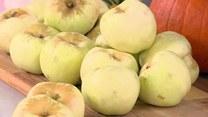 Piotr Kucharski i kuchnia pełna jabłek