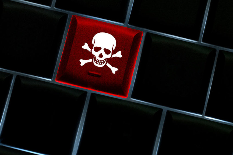 Piractwo wciąż jest w polskich firmach sporym problemem /123RF/PICSEL