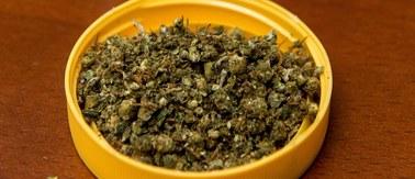 PiS chce, by lecznicza marihuana była dostępna na receptę w aptekach