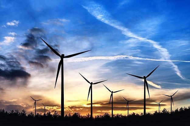 PiS chce zakazać budowy wiatraków bliżej niż 3 km od budynków /©123RF/PICSEL