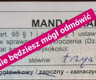 PiS chce zakazać możliwości odmowy przyjęcia mandatu