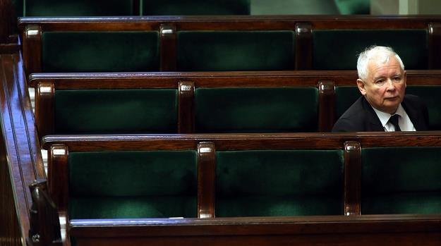 PiS nie ma kadr czy kpi z prawa? Nz. Jarosław Kaczyński, prezes PiS. Fot. Sławomir Kamiński /AGENCJA GAZETA