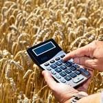PiS: Premier powinien zabrać głos na temat niskich cen skupu zbóż