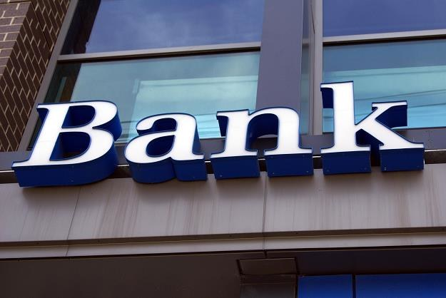 PiS stworzy bank do zadań specjalnych? /©123RF/PICSEL