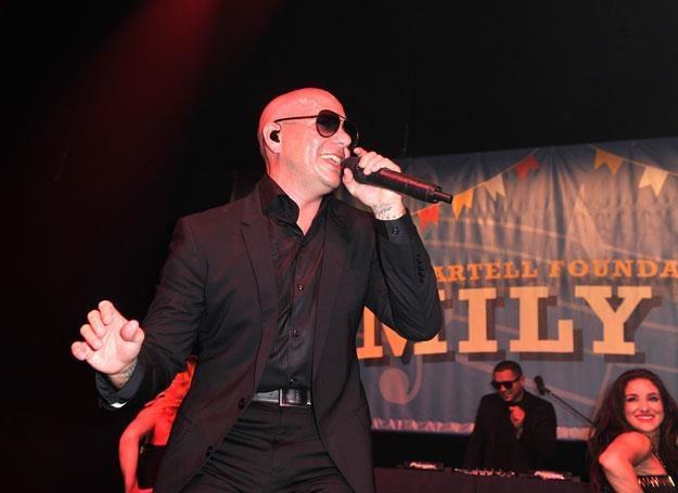 Pitbull na scenie - fot. Stephen Lovekin /Getty Images