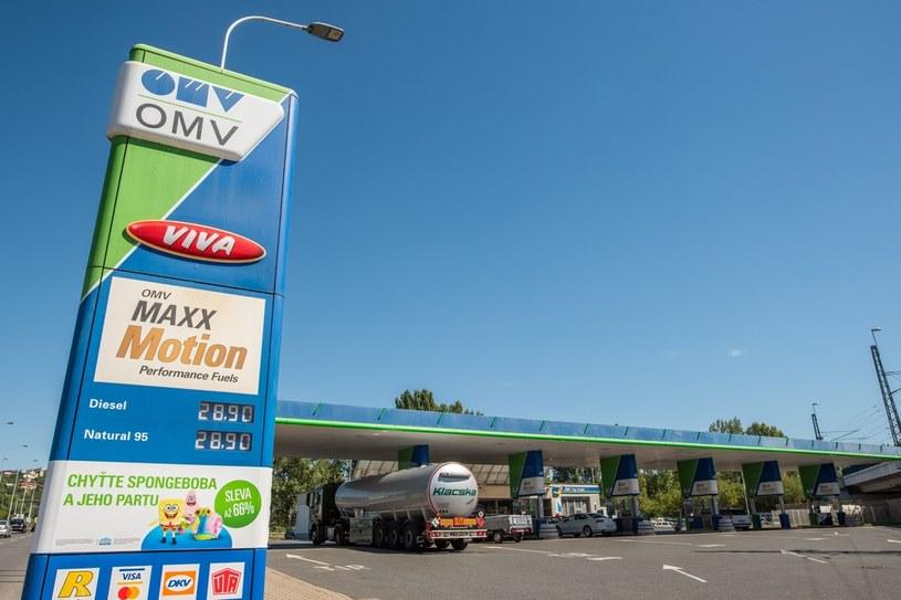 PKN Olen rozpycha się na Słowenii /123RF/PICSEL