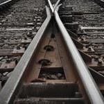 PKP PLK: Pociągi wróciły na Centralną Magistralę Kolejową