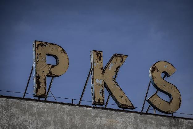 PKS Gniezno zawiesza regularną komunikację autobusową. Fot Krzysztof Mystkowski /Reporter