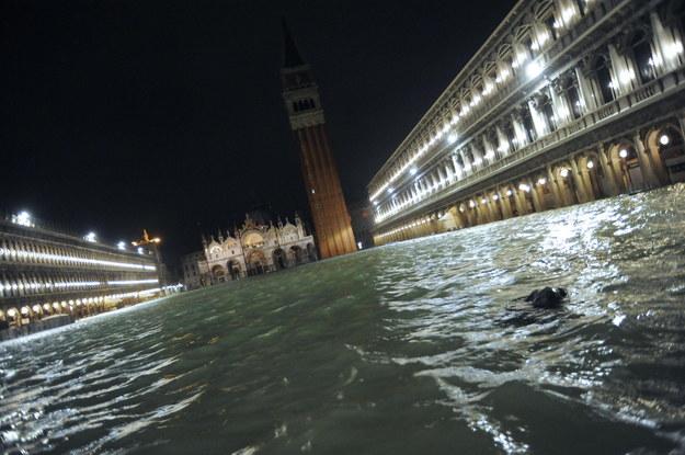 Plac św. Marka w Wenecji /ANDREA MEROLA /PAP/EPA