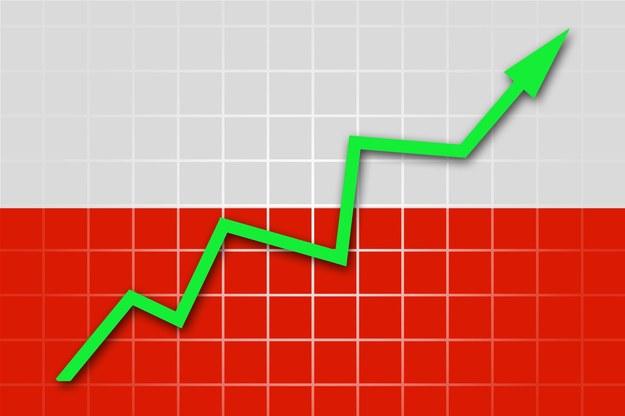 Płace rosą w Polsce /123RF/PICSEL