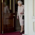 Plaga szczurów w Pałacu Buckingham. Królowa Elżbieta uciekła z posiadłości